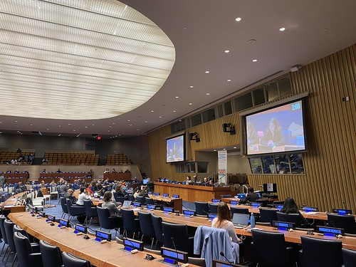 Untitled | United Nations DESA - Inclusive Social ...