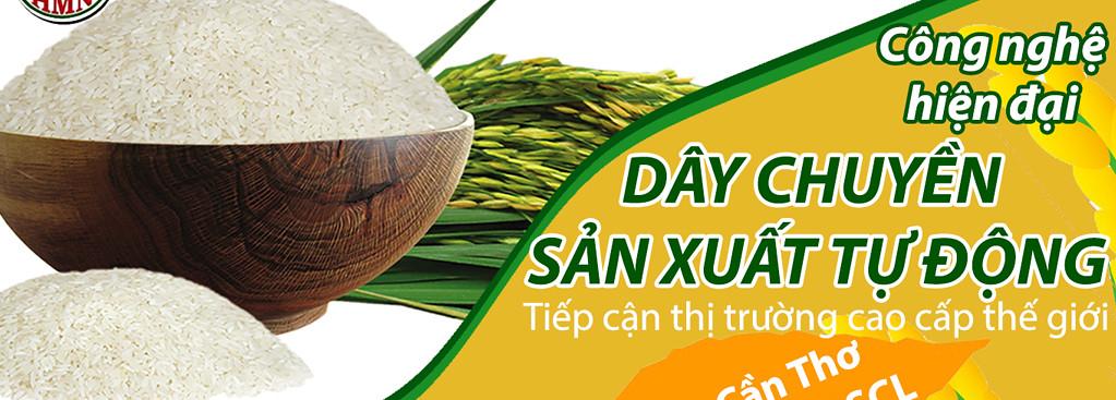 Nâng cao chất lượng lúa gạo xuất khẩu - Chế biến xuất khẩu lúa gạo Cần Thơ và ĐBSCL HOÀNG MINH NHẬT 0292 3505019