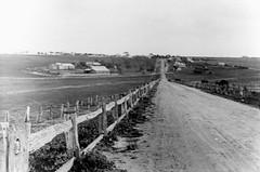 Hackle Farm (Cox, Culley), circa 1937