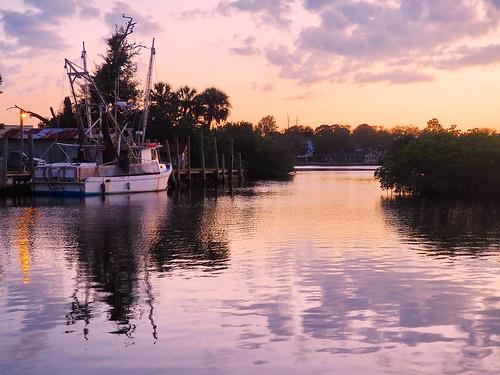 florida tarponsprings fishing commercial sunset bayou