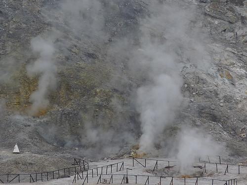 Zpráva od Vesuvu: Den 7 – Pozzuoli ve znamení racků