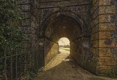 """Through the arch"""