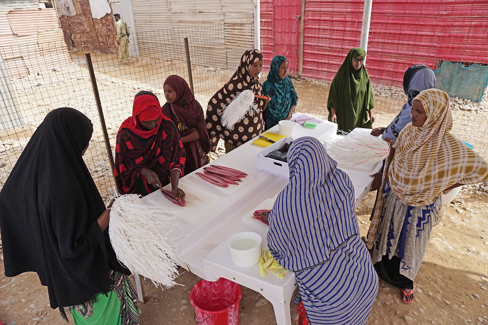 Improving the nutritional status of Somali households