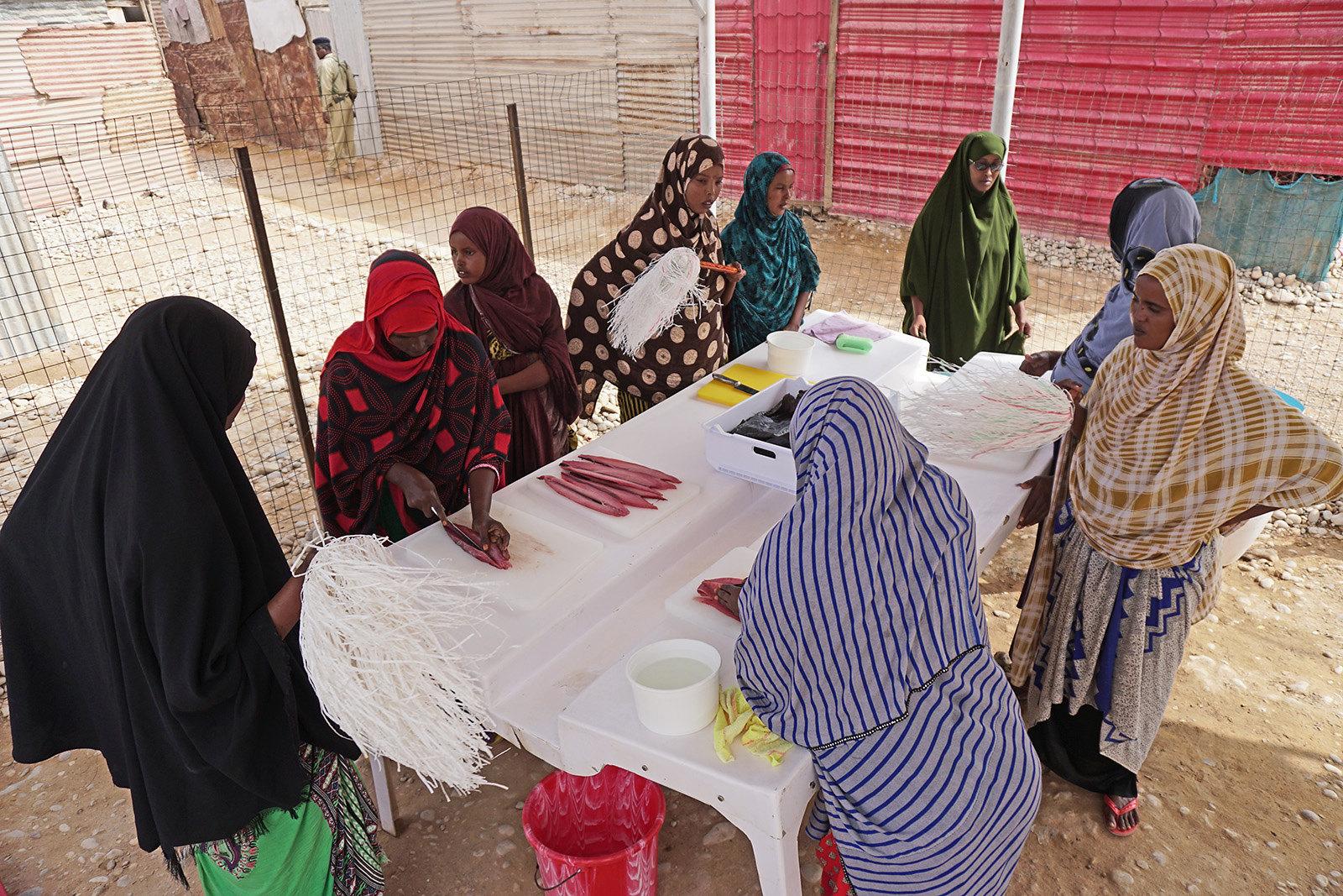 Improving the nutritional status of Somali households