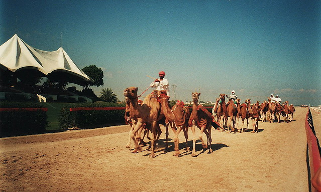 At Work - Dubai - 2000
