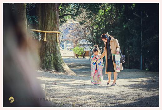 猿投神社で七五三 杉のご神木 大木