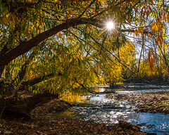 river-sun