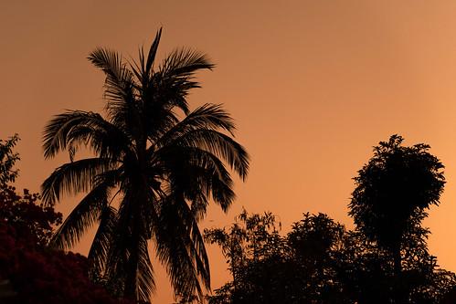 sunrise morning chiangmai thailand silhouette