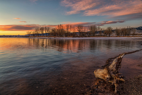 sunrise dawn daybreak lakechatfield chatfieldstatepark colorado trees pond reflections landscape driftwood