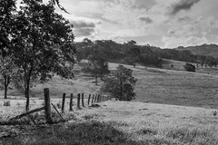 Rural Countrysidein black and white