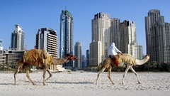 Cheap Flights To Dubai UAE  From Paris France 202 Euro