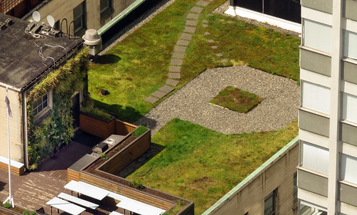 Funky roof garden and hut on top of a Vancouver high-rise