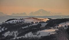 Au loin le Mt Blanc