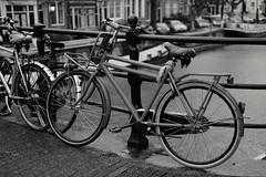 Rainy morning in Amsterdam....