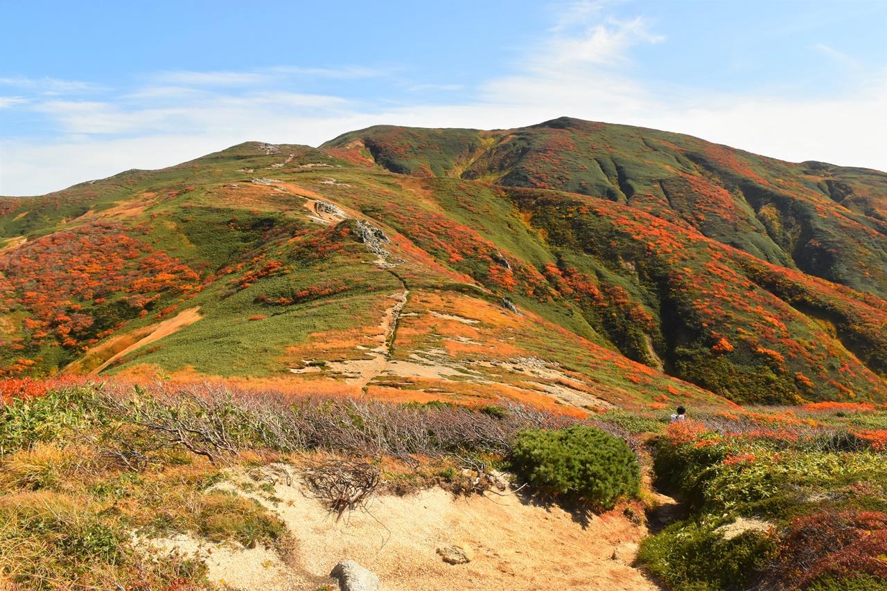 秋の朝日連峰 紅葉の稜線を行く縦走登山