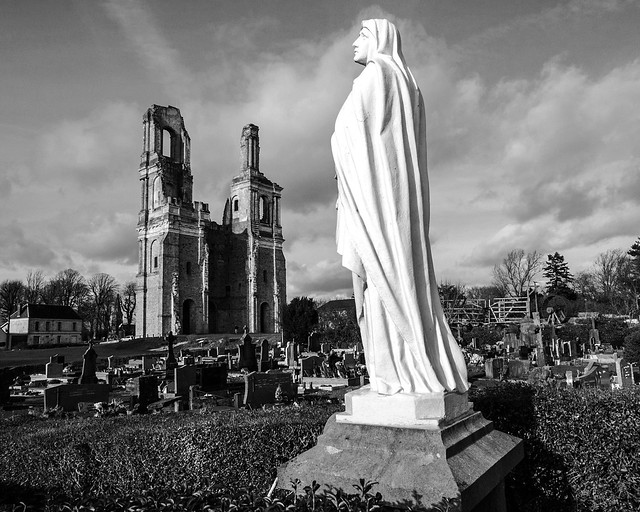 2020 02 12_4070_Ruines de l'abbaye du Mont-Saint-Eloi