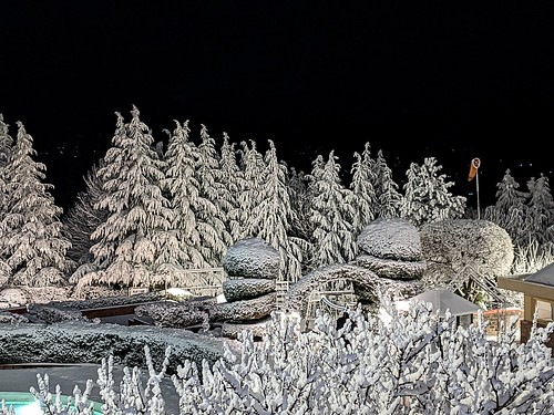 nopeople winter outdoors snow nature coldtemperature tree tranquility beautyinnature scenicsnature tranquilscene landscapescenery night nightscape bhurban pakistan punjab frozen nonurbanscene mountain