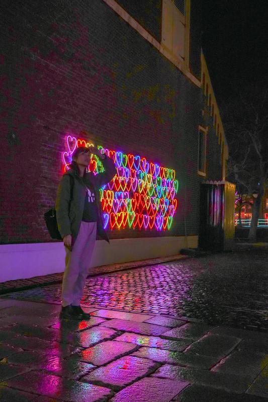 Huis Ten Bosch Illumination
