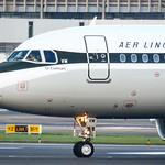 Aer Lingus Retro Livery EI-DVM