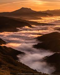 camino de niebla