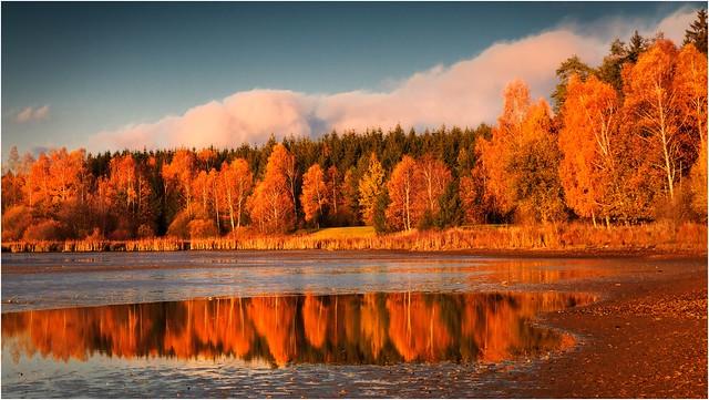 Der Farben Frühling ist der Herbst