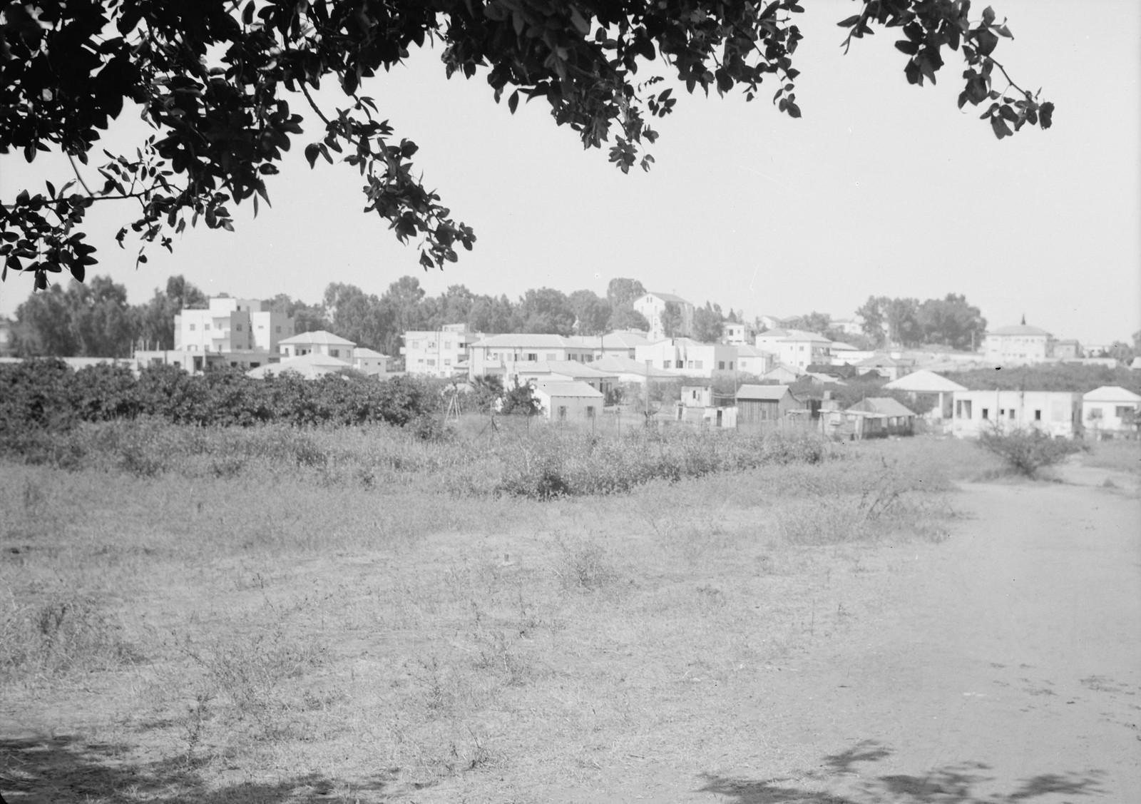 19. Ришон-ле-Цион с более близкого расстояния
