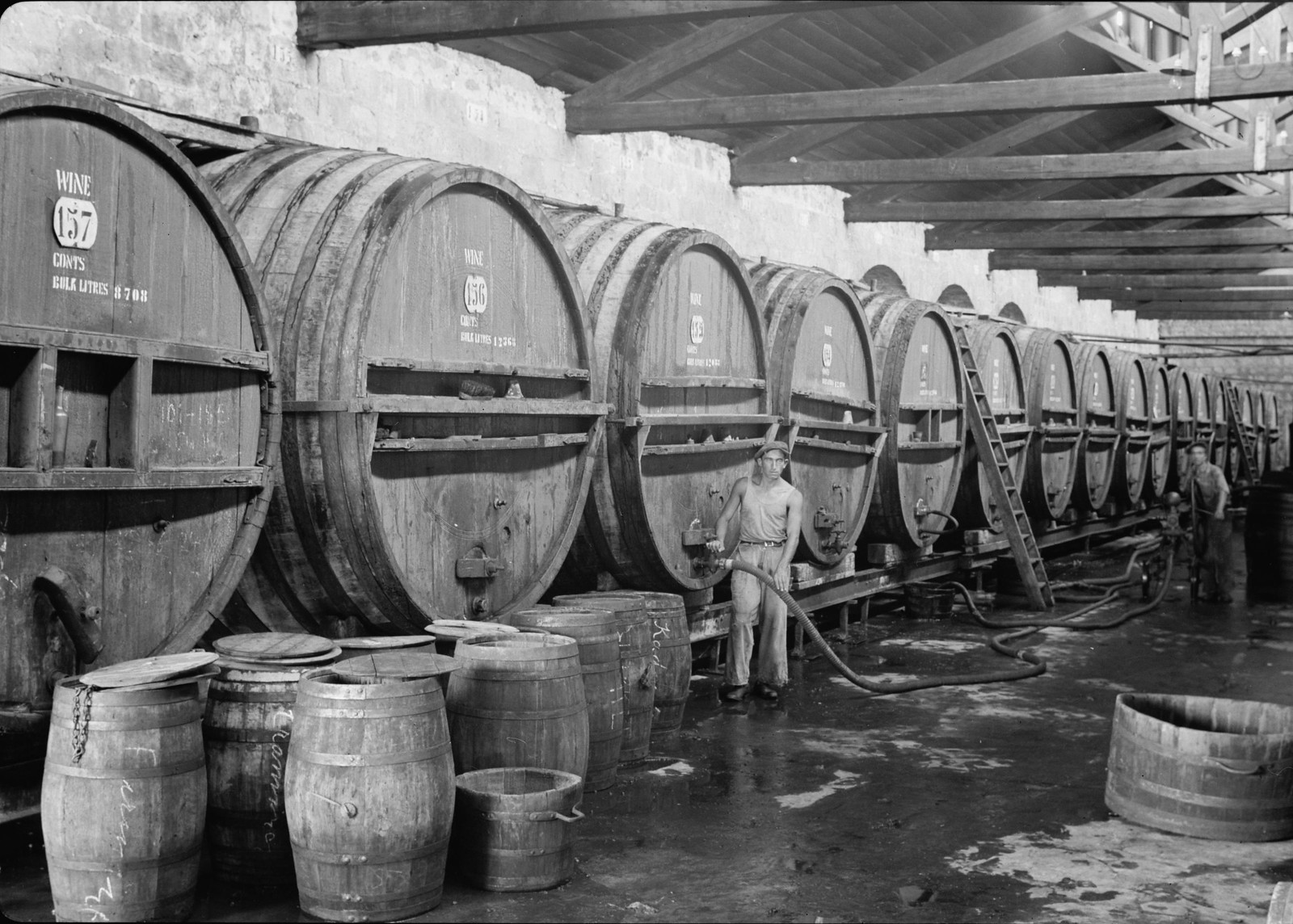 12. Ряд больших винных бочек, наполненных новым вином (погреб для брожения)