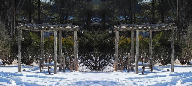 Arbor & Bench