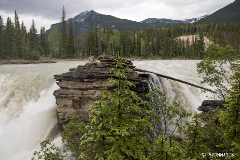 Athabasca Falls, Jasperin kansallispuisto, Kanadan Kalliovuoret