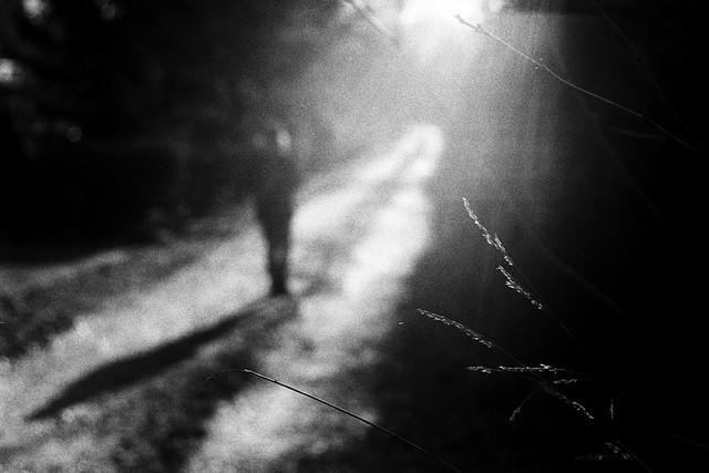 Sun in his heart (Leica M6)