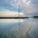 Bair Island sunrise