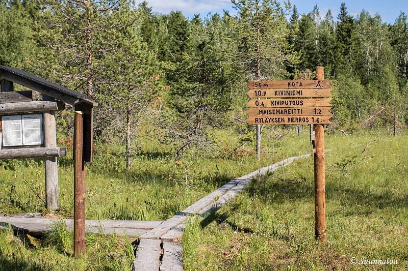 Ryläys, Kolin kansallispuisto