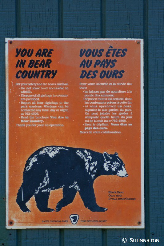 Banff karhut