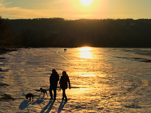 silhouette ice winter cayuga lake stewart park ithaca ny dogs walking