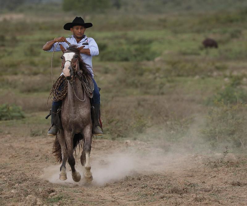 Llanero_Ascanio_Llanos Colombia_DZ3A3327
