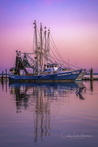 boats harbor sunset dock oriental orientalnc northcarolina