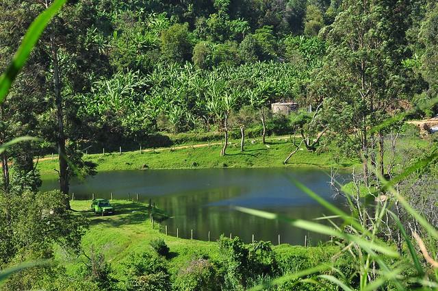 mobuku-water-rwenzoris @ Uganda