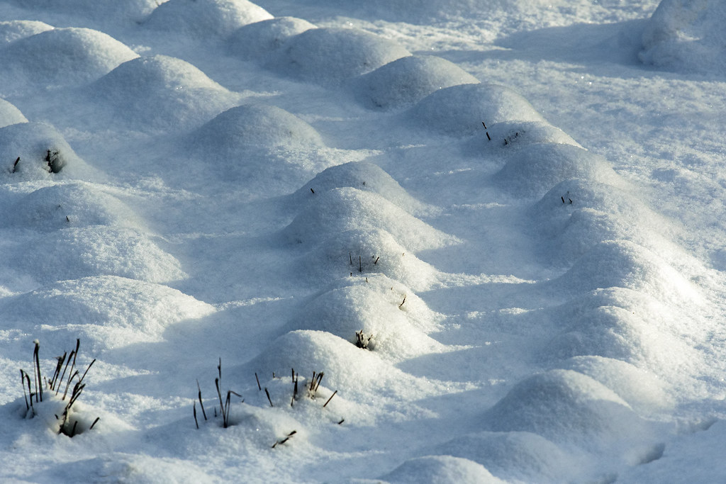 Snow covered labyrinth or ancient burial mounds?