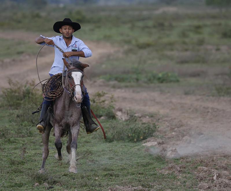 Llanero_Ascanio_Llanos Colombia_DZ3A3330