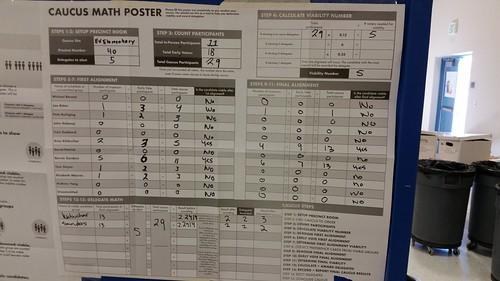 Nevada Lyon Precinct 40 Democratic Caucus Results 2020
