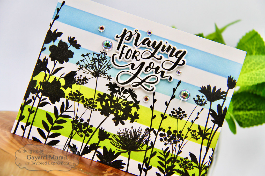 Blue and green stripped card closeup (1)