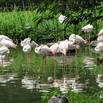 Tierpark Hagenbeck in Hamburg