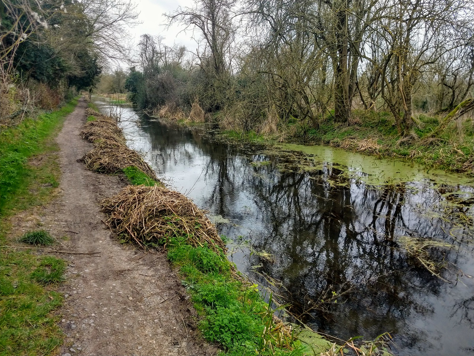Wendover Arm Canal