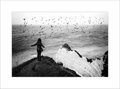 La pensée a des ailes, nul ne peut arrêter son envol.
