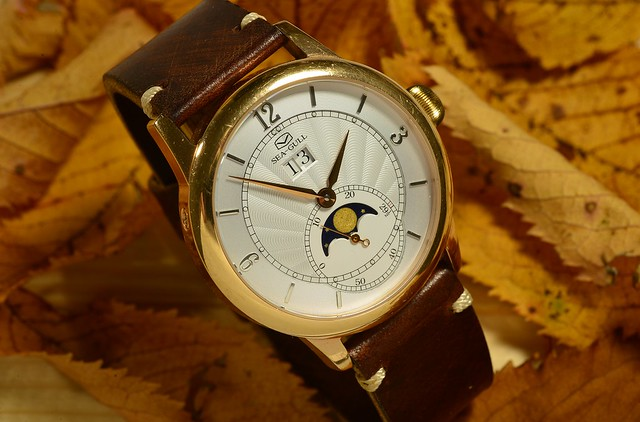 Seagull Moon Phase Watch