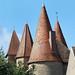 Les toits du château de Chassy