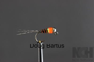 Doug Bartus