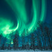 northenlights -salla-