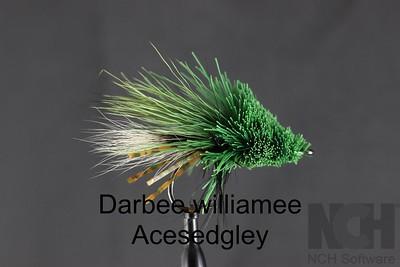 Darbee Williammee (1)