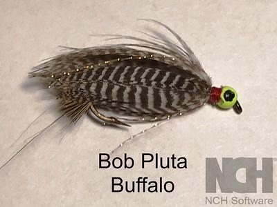 Bob Pluta